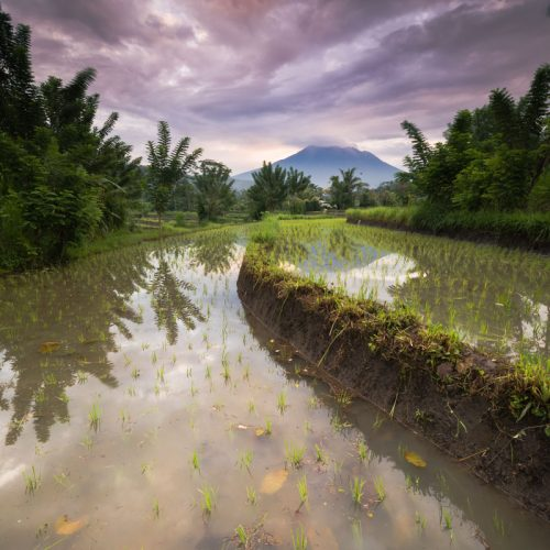Bali Lombok | Indonesië