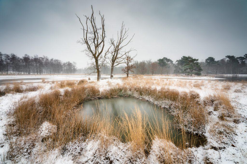 Kortenhoeff - © Dion van den Boom. Alle rechten voorbehouden.