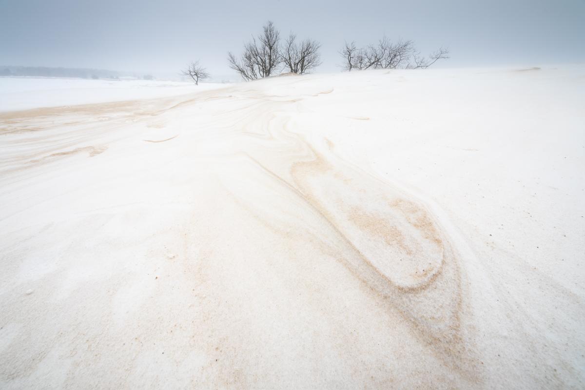 Koning Winter 2021 – De 2e winterprik